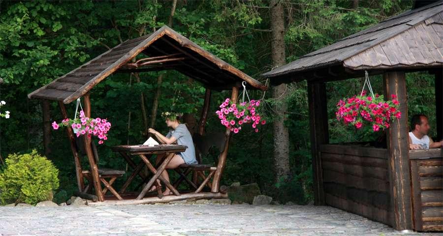 Альтанки біля лісу, Вежа Ведмежа, Карпати