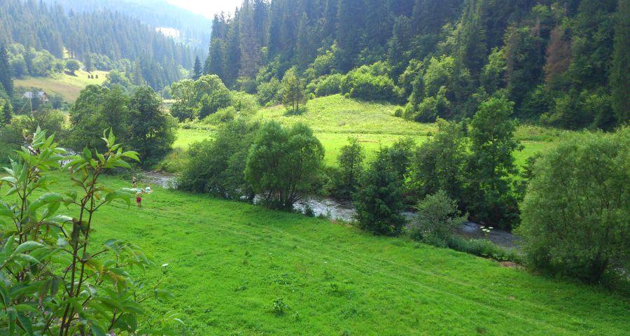 Літній відпочинок біля річки в Карпатах