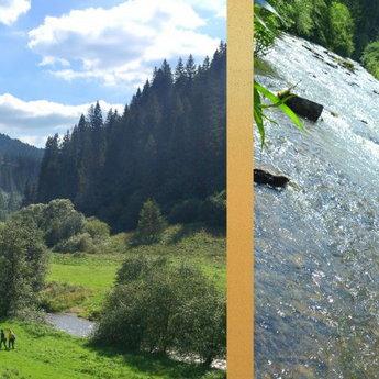 Річка Славка в селі Волосянка влітку