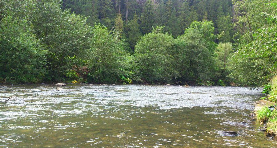 Відпочинок біля річки rika slavka 28 900