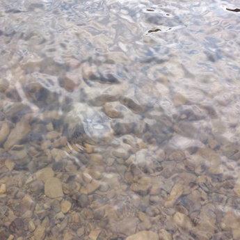Чиста вода гірської річки Славки (Карпати)