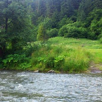 Ріка Славка влітку