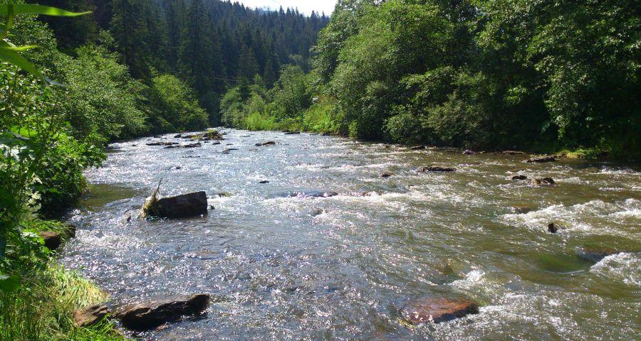 Відпочинок біля річки rika slavka 8 900