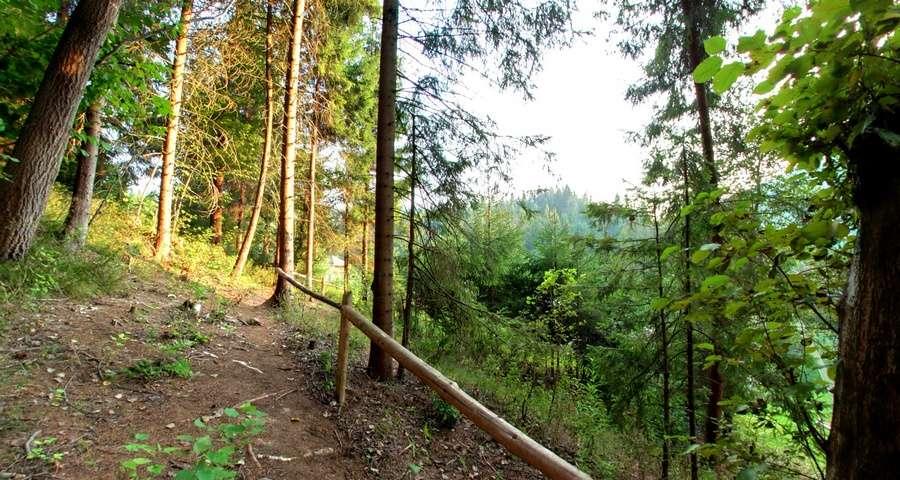 Ведмежа стежка, Карпати влітку