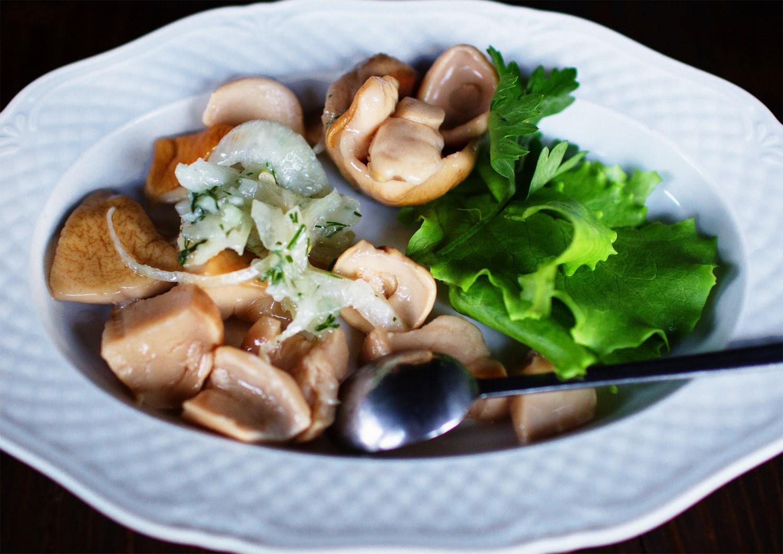 Білі карпатські гриби