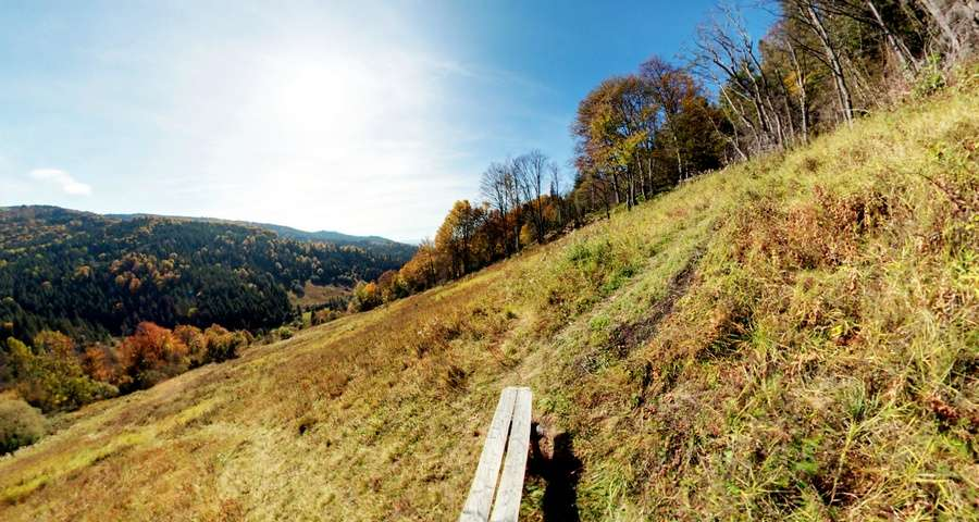 Carpathian autumn