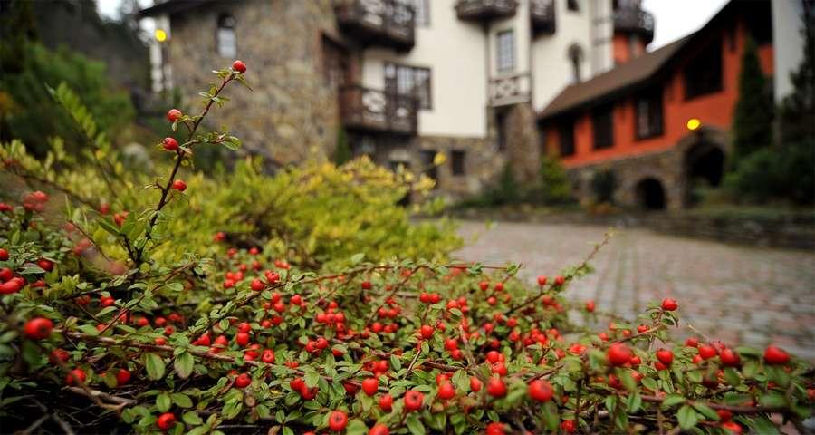 Autumn rest in Carpathians