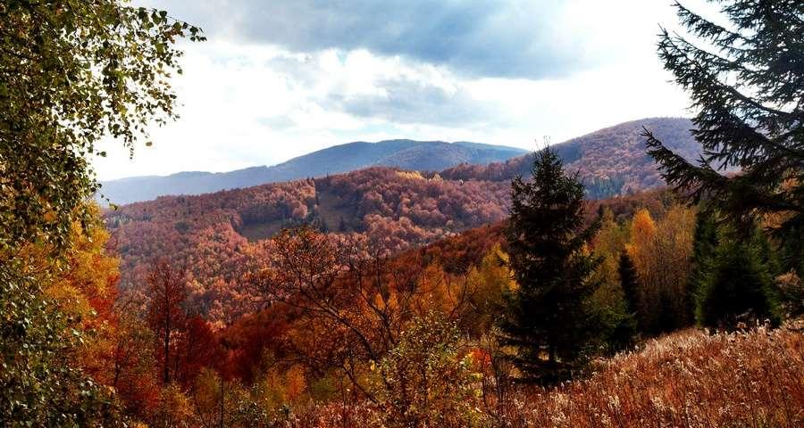 Autumn Carpathian landscape