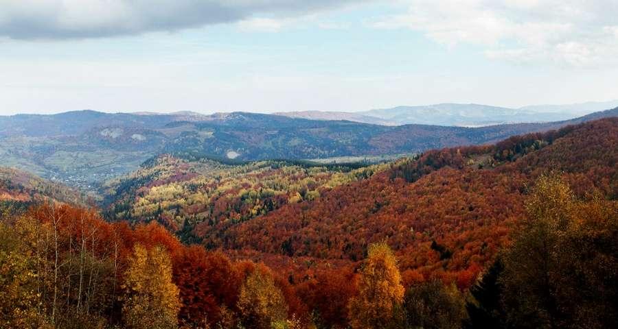Кольорова осінь в Карпатах у оксамитовий сезон