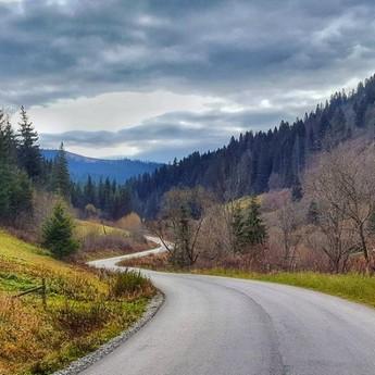 Road in fairy autumn