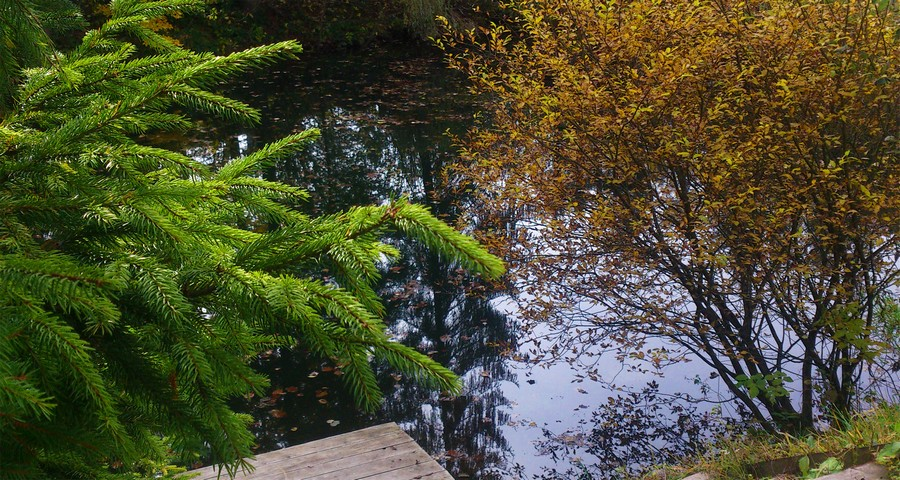 Near the lake in the fall - the Carpathians, Volosyanka