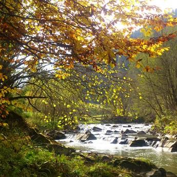 Slavka River in the natural Mokhnach (Volosyanka, Lviv region). Picturesque autumn landscape