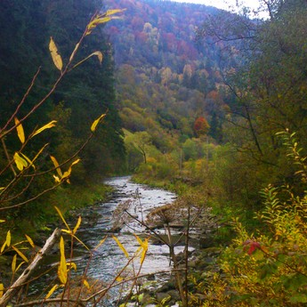 Autumn Carpathian landscapes near mountain river Slavko (Volosyanka - Slavske) 2019