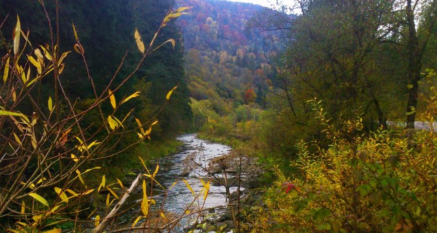 Осінні карпатські пейзажі біля гірської річки Славка (Волосянка - Славське) 2019