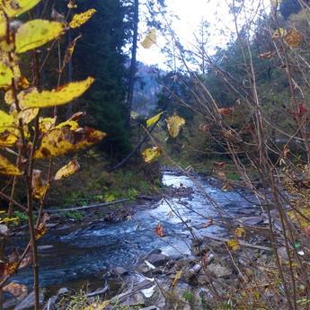 Carpathian autumn landscapes (Volosyanka - Slavske)