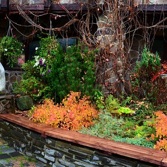 Beautiful autumn pictures