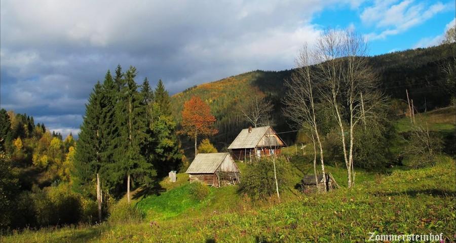 Autumn in the Carpathians Volosyanka