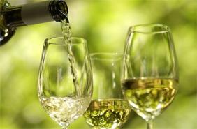 фестиваль вина 2015