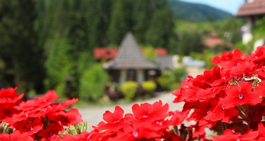 Локації для яскравих вражень: де відпочити в Україні влітку 2019 так, щоб назавжди запам'яталося?