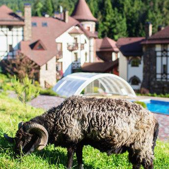 Оригінальні місця для відпочинку влітку в Україні