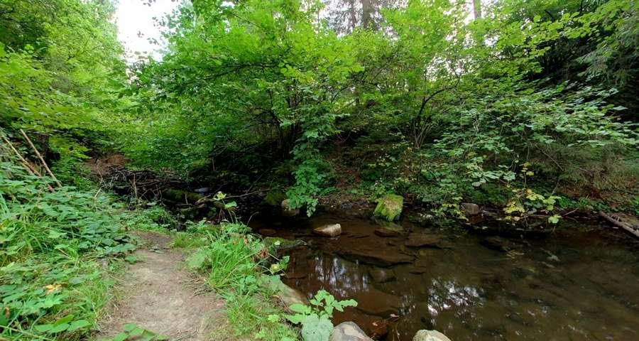 Відпочинок в Карпатах літом біля води