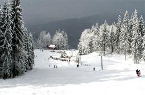 спуски на лижах і сноубордах карпати славське