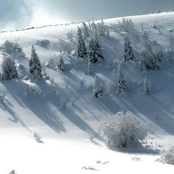 Snowy winter Carpathians