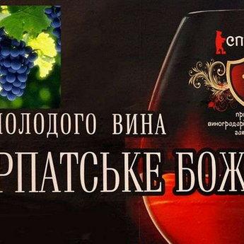 Фестиваль молодого вина «Закарпатське Божоле»