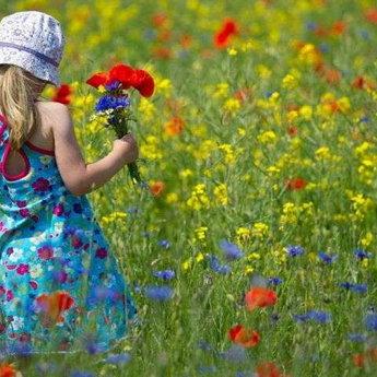 1 травня, Свято Весни і Праці