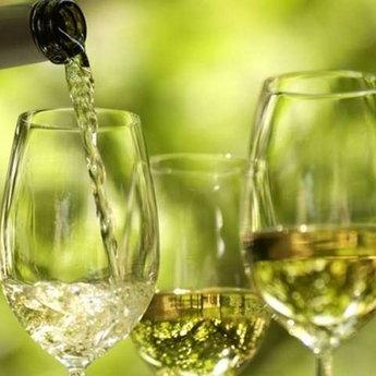 Фестиваль вина на Берегівщині