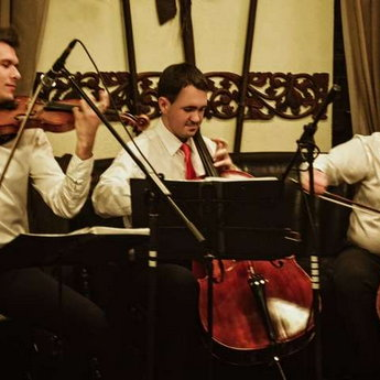 Новорічна програма - класична музика і хіти попередніх років