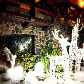 Карпати, новий рік у Вежі Ведмежій, Славське