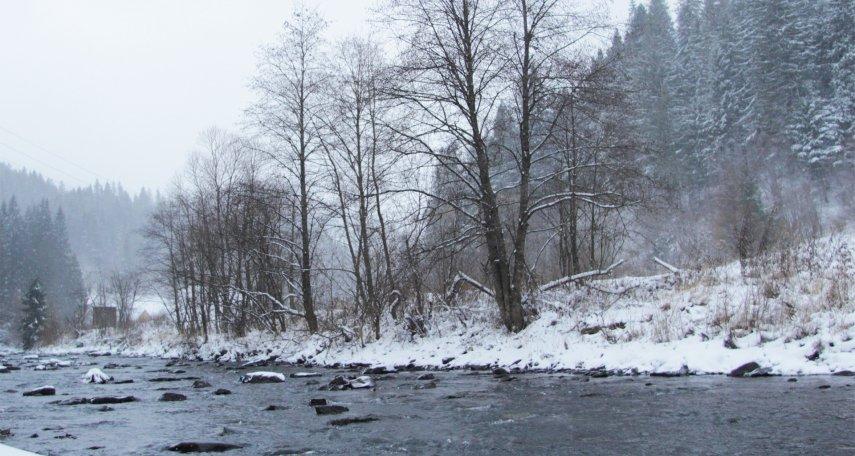 карпати взимку біля річки