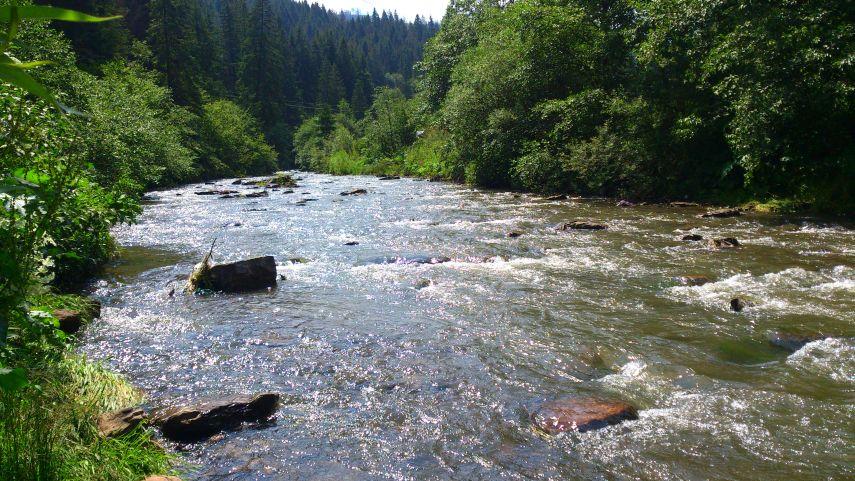 гірська річка карпати славка