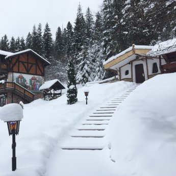 Зимовий відпочинок у казковому будиночку-хобітоні у Карпатах у Вежі Ведмежій