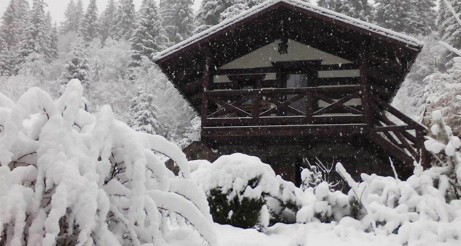 zima2017.jpg