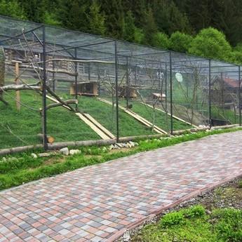 Міні-ферма в готелі Вежа Ведмежа, Карпати