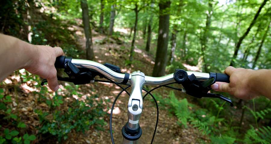 Biking in the Carpathians