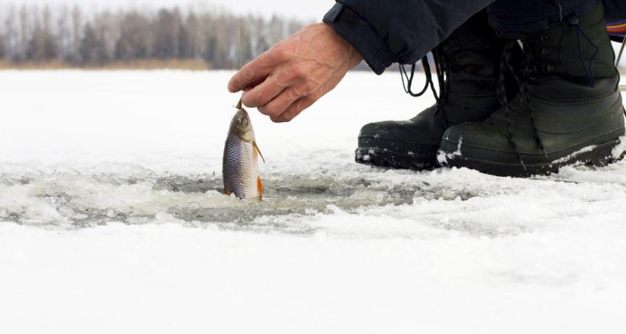 Carpathians, winter fishing