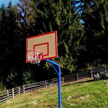 Баскетбол в Карпатах