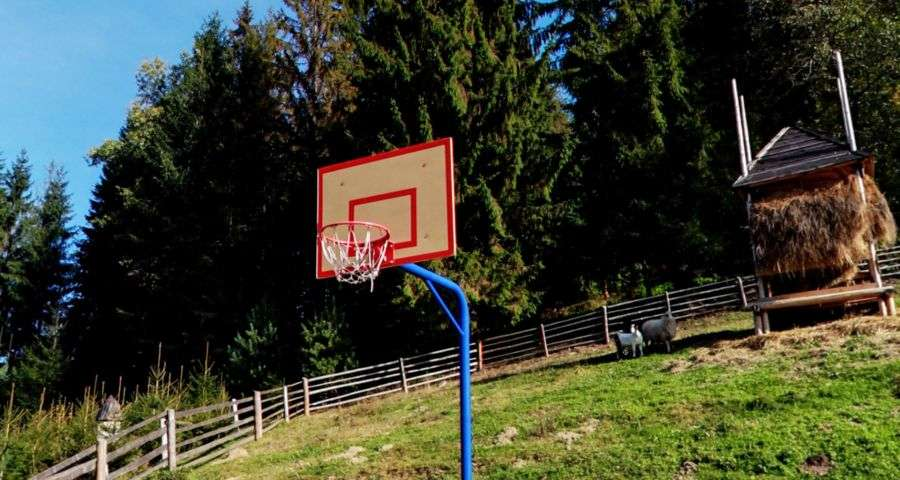 Basketball in the Carpathians