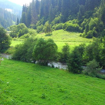 Summer holiday by the river in the Carpathians