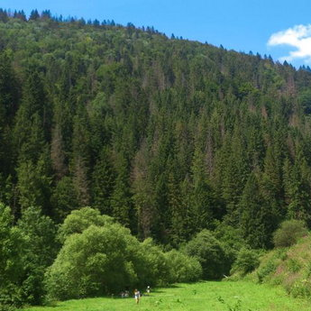 Family holidays in the Carpathians near the river, picnic near the reservoir