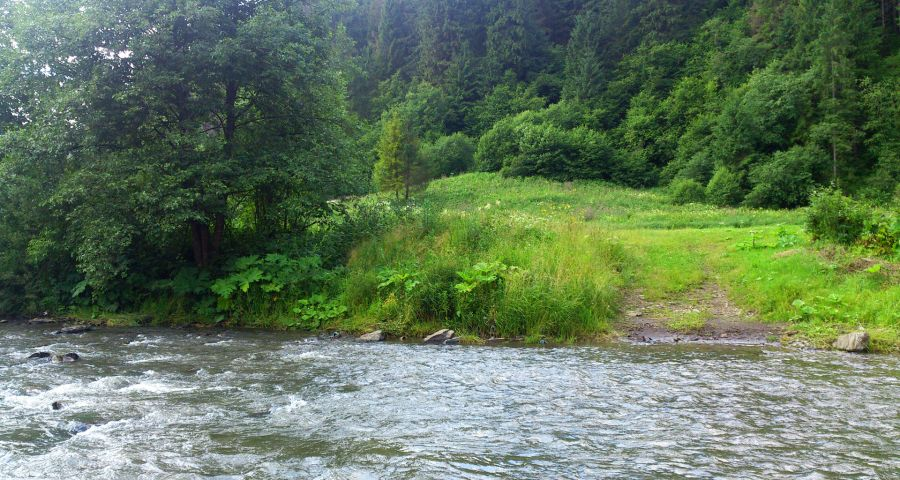 River Slavka in summer